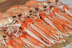 West Coast Langoustines a dinner speciality at Home Farm Muir of Ord