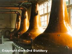 Glen Ord Distillery walking distance from Home Farm Bed and Breakfast Muir of Ord