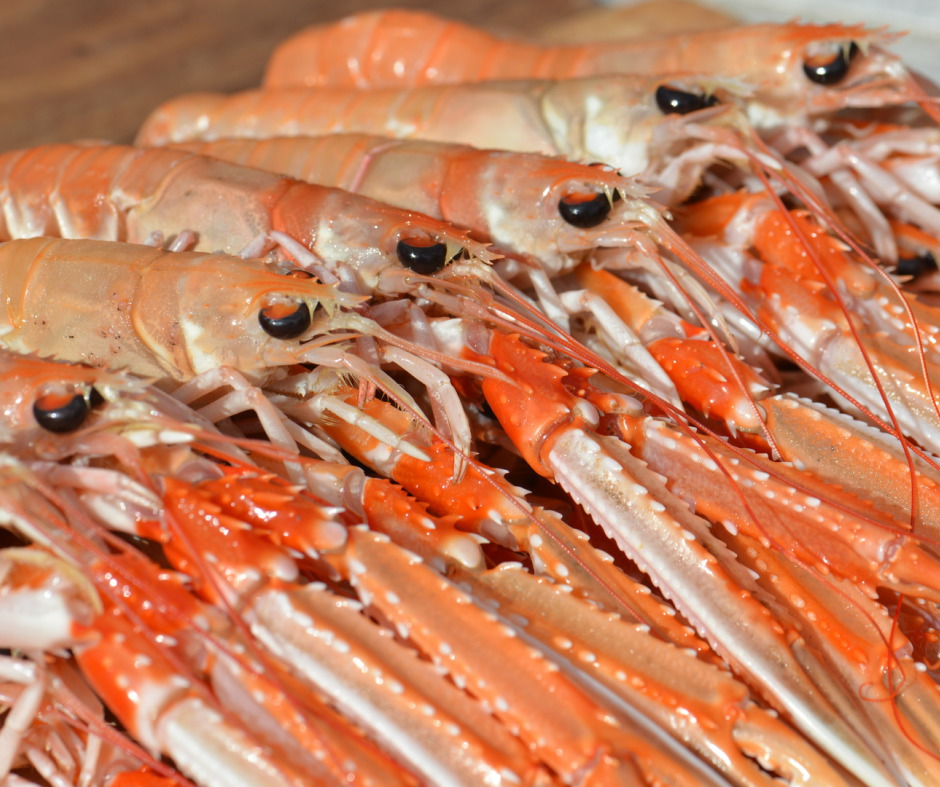 Creel caught Langoustines a speciality at Home Farm near Loch Ness